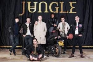 Banda Jungle