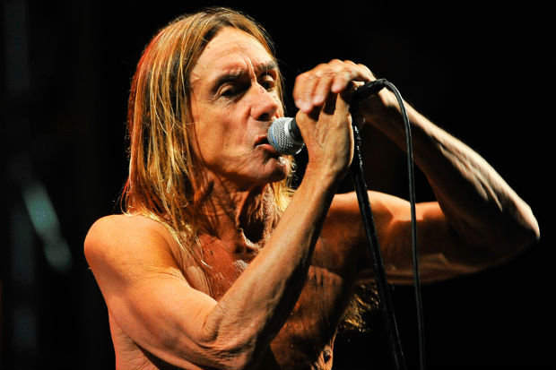 Iggy Pop punk rock rules